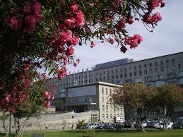 Hospital Santa Maria alergologia